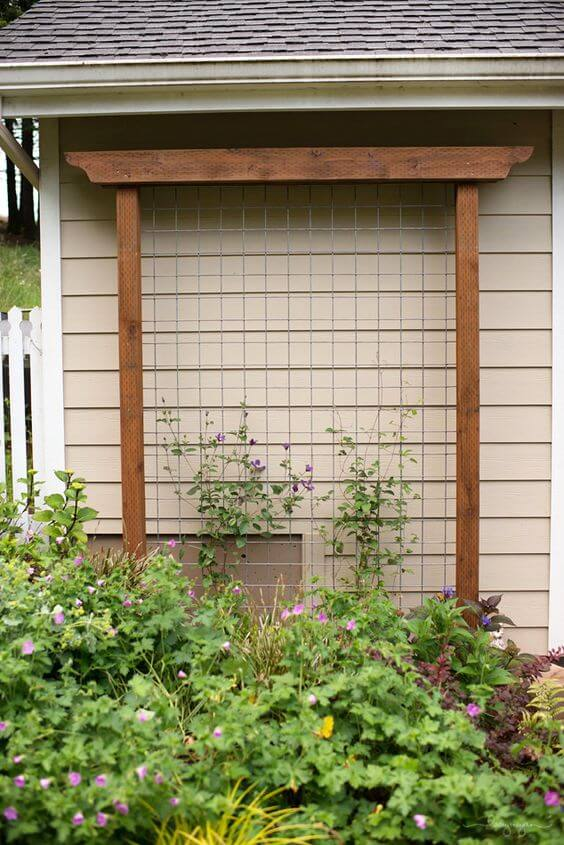 Diy garden trellis ideas for Wall trellis ideas