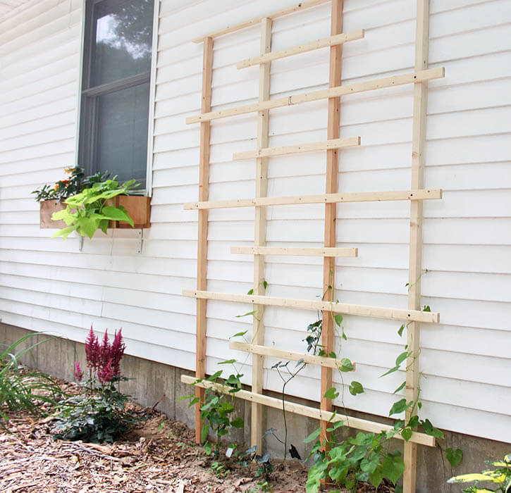 Diy garden trellis ideas for Trellis design ideas