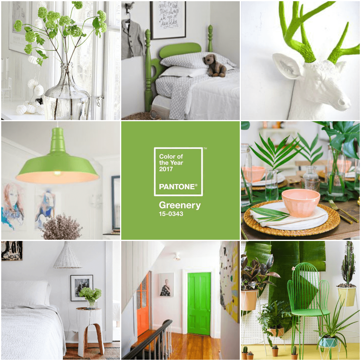 PANTONE Reveals The Colour Of Year For 2017 GREENERY
