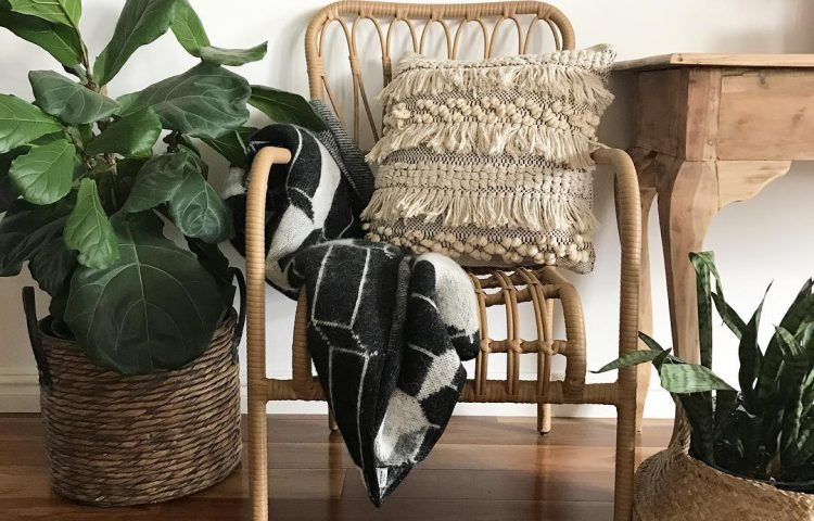 rattan kmart chair